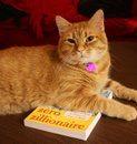 Cat-on-my-book-Brooke-Harker