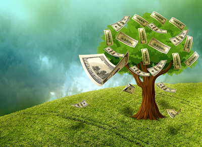 cash grows on trees